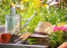 8 полезных устройств для жизни на даче