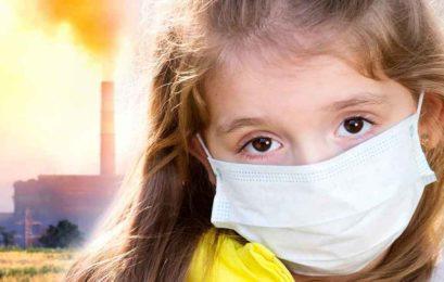 BORK против IQAir. Какой очиститель воздуха купить?